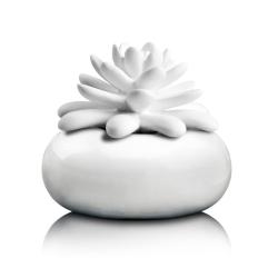 Diffuseur Lotus - Pinssenlit Blanc