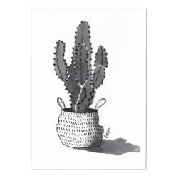 Carte Postale Cactus & Panier