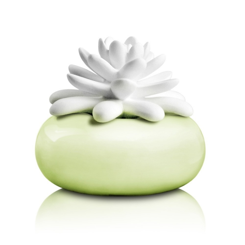 Diffuseur Lotus Jardin Botanique - Chando - Boutique Les inutiles