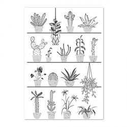 Poster Botanic (format 40x60)