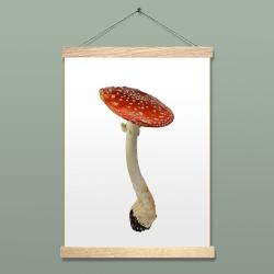 Affiche Liljebergs - Poster Champignon Rouge - Illustration Amanite Tue-Mouches - Accroche poster en bois - Les inutiles