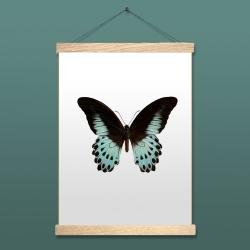 Affiche insecte Liljebergs - Papillon Turquoise - Papilio Polymnestor - accroche poster en bois - Boutique Les inutiles