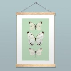 Liljebergs Affiche insectes turquoise et papillons blancs - Accroche photo en bois reglettes aimantées - Boutique Les inutiles